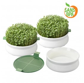 Coupelles de germination - lot de 3