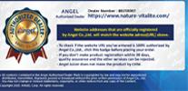 revendeur officiel Angel